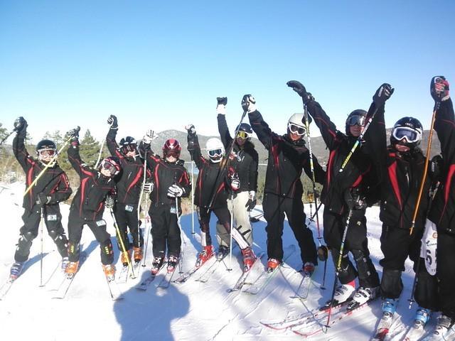 Skii Group