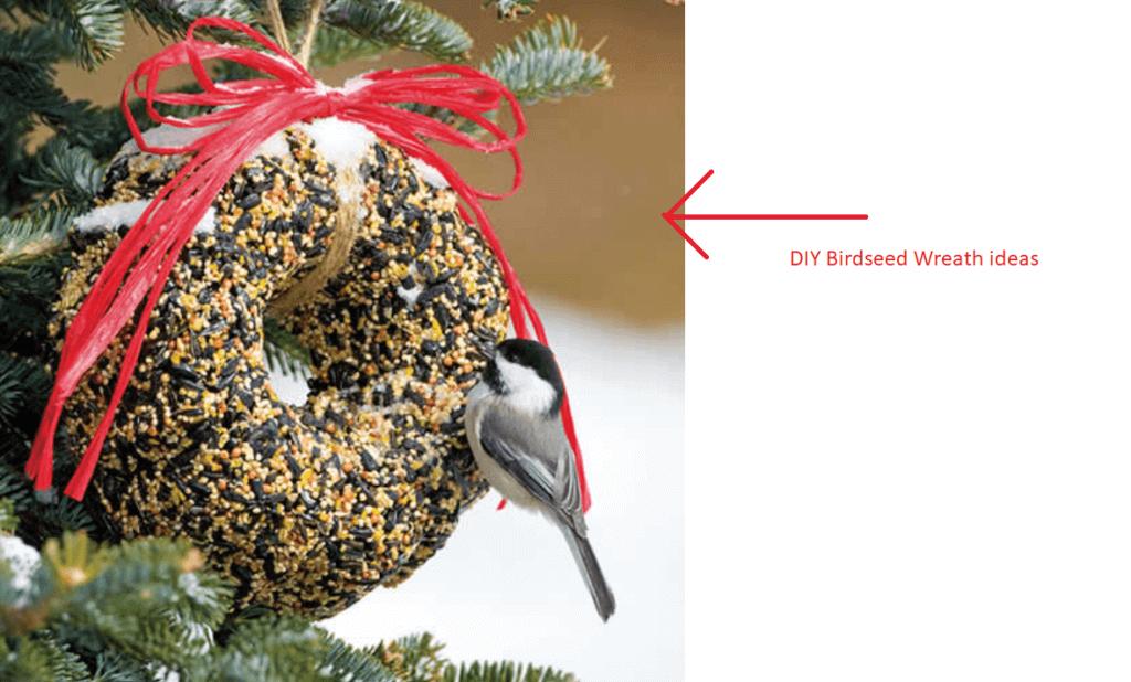 Birdseed-Wreath