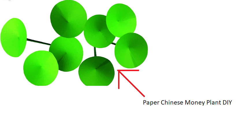 Paper-Chinese-Money-Plant