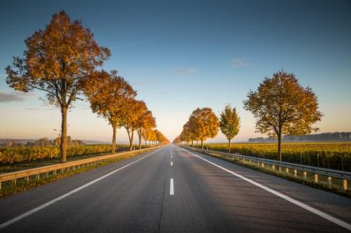 Les Elfes Autumn Camps - Trip to Europe driving